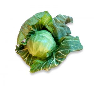 Summer Primo Cabbage