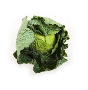 Summer Primo Cabbage