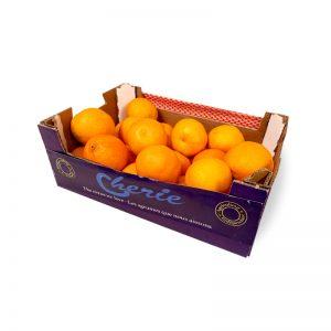 Clementines Shoebox