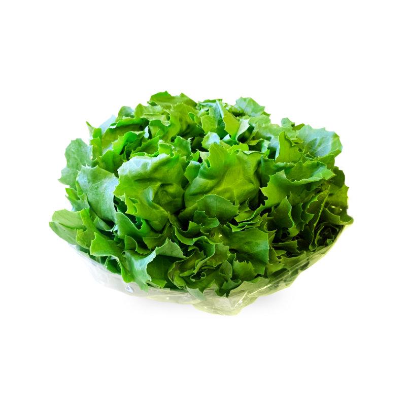 Frisby Lettuce