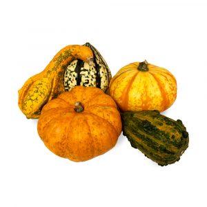 Pumpkins Special